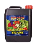TOP CROP BIG ONE 5 L