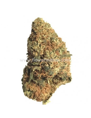 FLORES CBD CRYSTAL QUEEN INT.