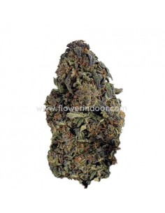 FLORES CBD STRAWBERRY INV.