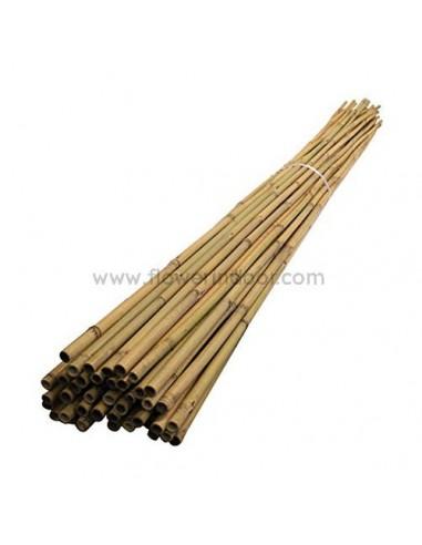 Tutor bambú 105 cm.