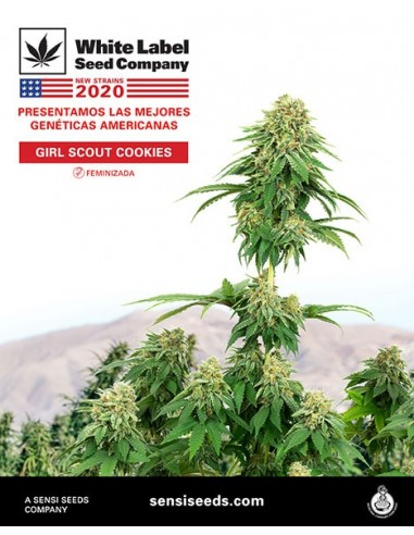 WHITE LABEL GIRL SCOUT COOKIES