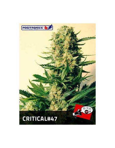POSITRONICS CRITICAL 47