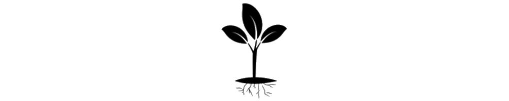 artículos y fertilizantes para tu huerto urbano