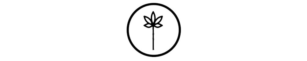 Flores de CBD - Marihuana legal
