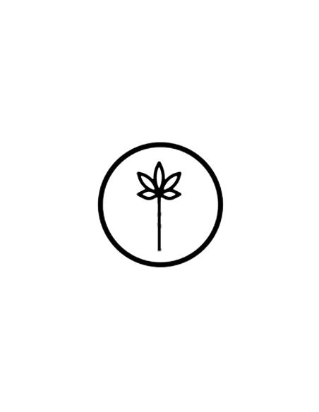 Flores CBD